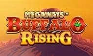 Buffalo Rising Megaways UK slot