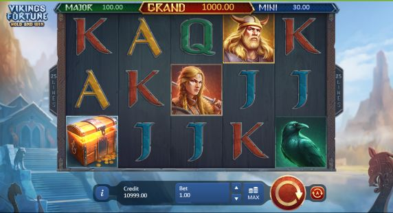 Vikings Fortune: Hold and Win UK slot game